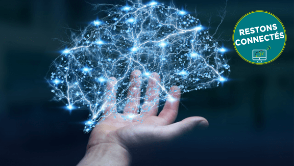 Intelligence artificielle et bio-inspiration